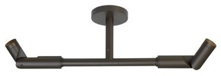 Tech Lighting Outdoor Mode Dual Wall Light/Ceiling Light Bronze