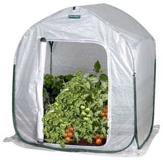 Plant-House Home Garden Cold Frame Style Greenhouse 3'x3'